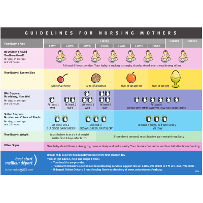 """Aperçu du tableau """"Breastfeeding Guidelines for Nursing Mothers"""""""