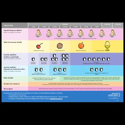 Aperçu de la table de référence sur l'allaitement