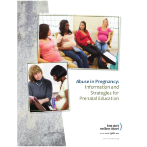 "Cover of the manual ""Abuse in Pregnancy: Information and Strategies for the Prenatal Educator"""