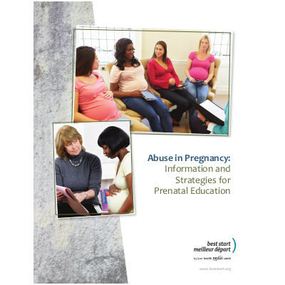 Abuse in Pregnancy: Information and Strategies for the Prenatal ...