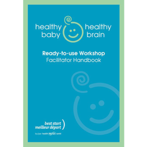 Cover image of Healthy Baby Healthy Brain facilitator guide