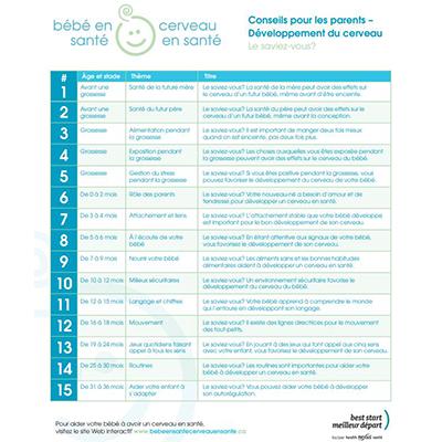 première page des feuillets de conseils pour parents sur le développement du cerveau