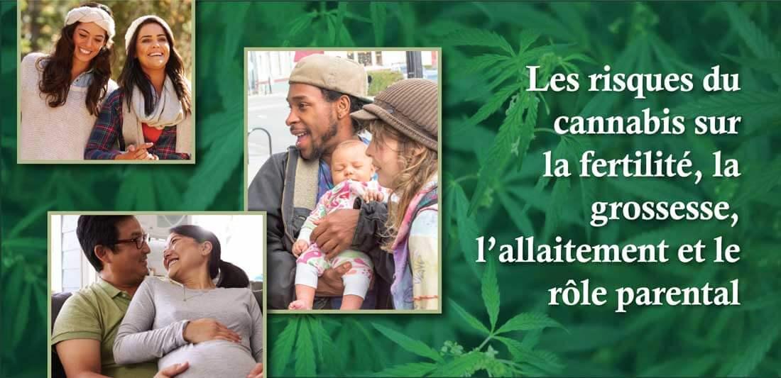 Les risques du cannabis sur la fertilité, la grossesse, l'allaitement et le rôle parental
