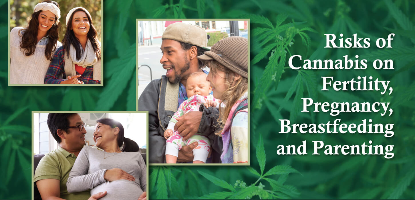 Risks of Cannabis on Fertility, Pregnancy, Breastfeeding and Parenting